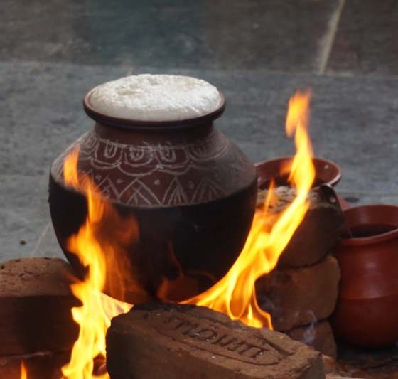 Karpagam Architecture - Pongal Cooking